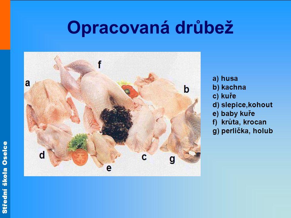Opracovaná drůbež a) husa b) kachna c) kuře d) slepice,kohout e) baby kuře f) krůta, krocan g) perlička, holub