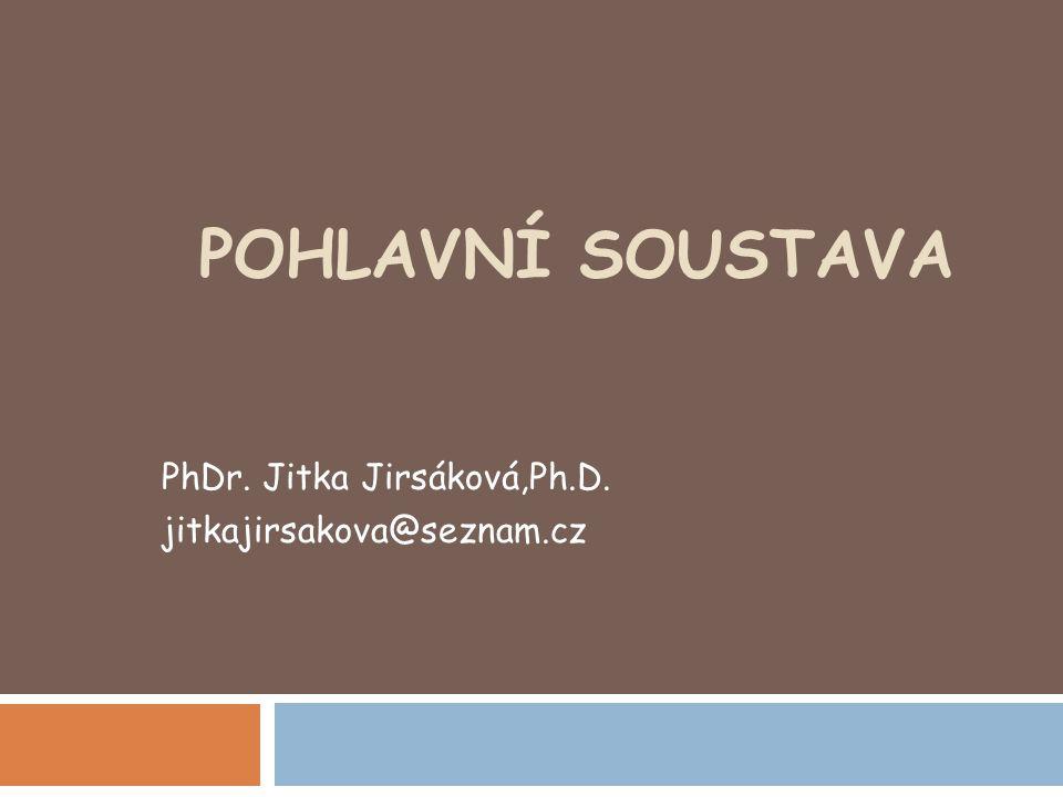 PhDr. Jitka Jirsáková,Ph.D. jitkajirsakova@seznam.cz