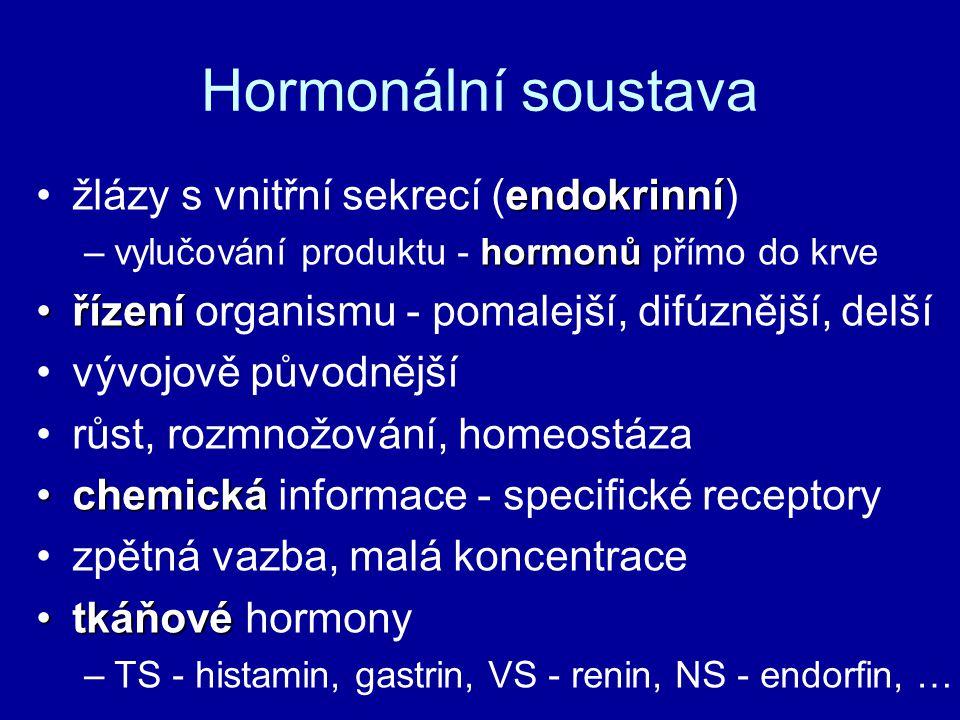 Hormonální soustava žlázy s vnitřní sekrecí (endokrinní)