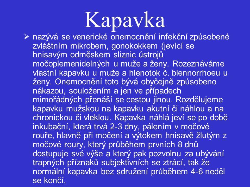 Kapavka