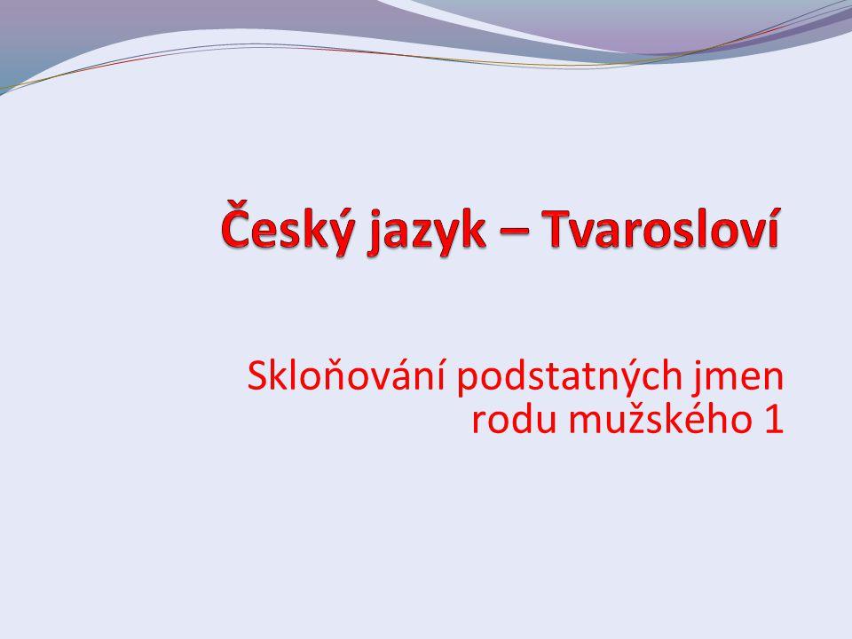Český jazyk – Tvarosloví