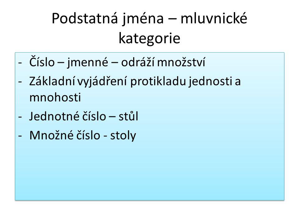 Podstatná jména – mluvnické kategorie