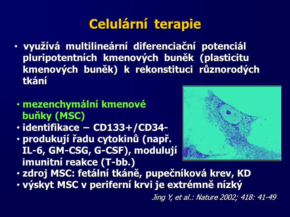 Celulární terapie využívá multilineární diferenciační potenciál