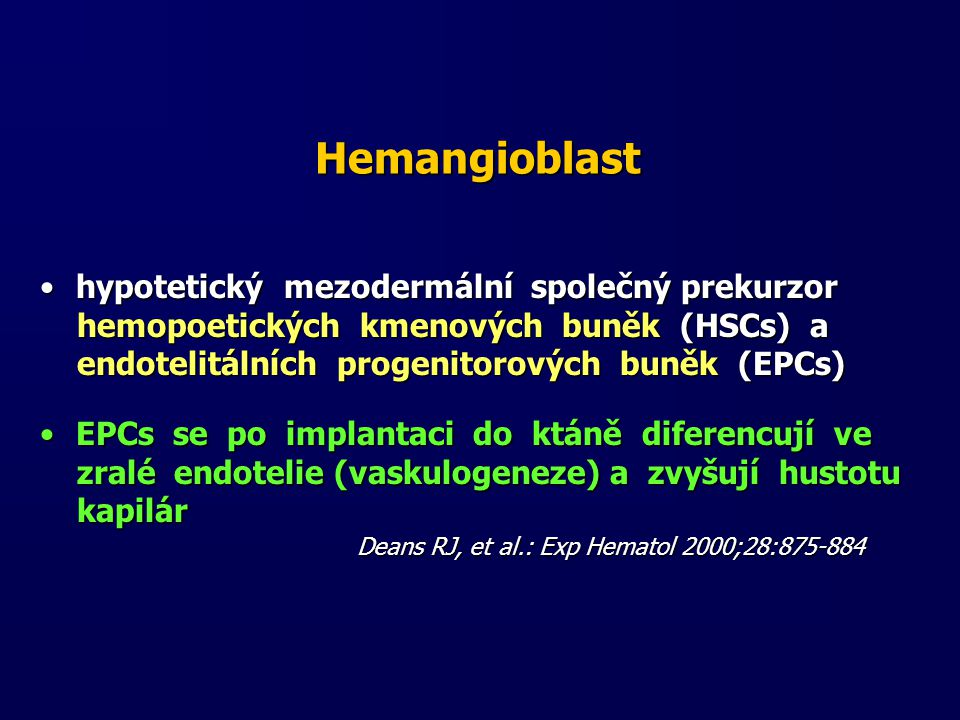 Hemangioblast hypotetický mezodermální společný prekurzor