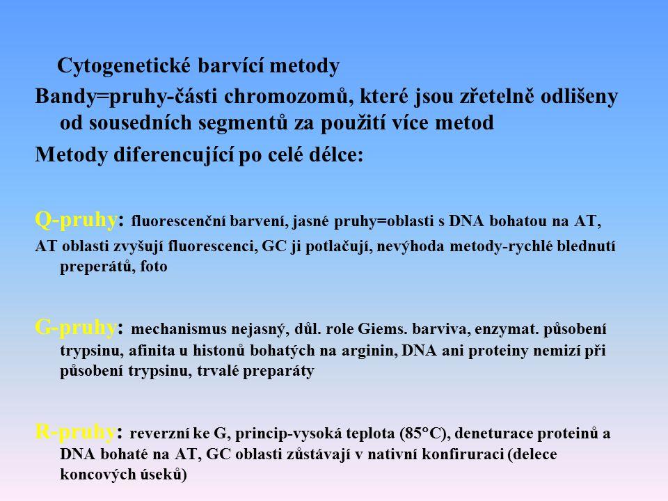 Cytogenetické barvící metody