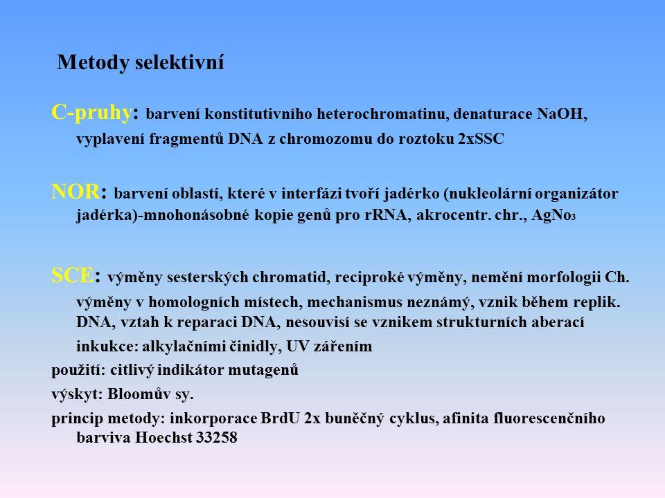 C-pruhy: barvení konstitutivního heterochromatinu, denaturace NaOH,