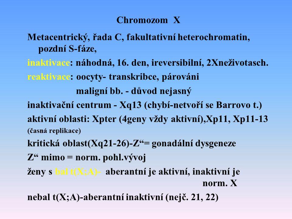 Metacentrický, řada C, fakultativní heterochromatin, pozdní S-fáze,