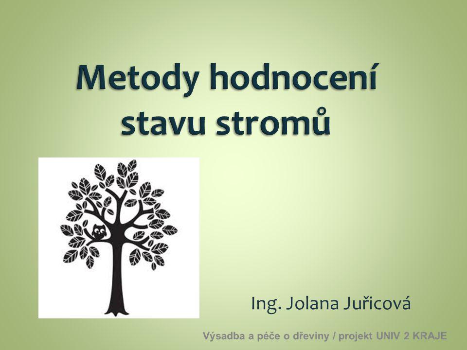 Metody hodnocení stavu stromů
