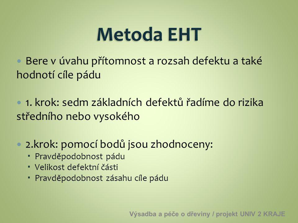 Metoda EHT Bere v úvahu přítomnost a rozsah defektu a také hodnotí cíle pádu.