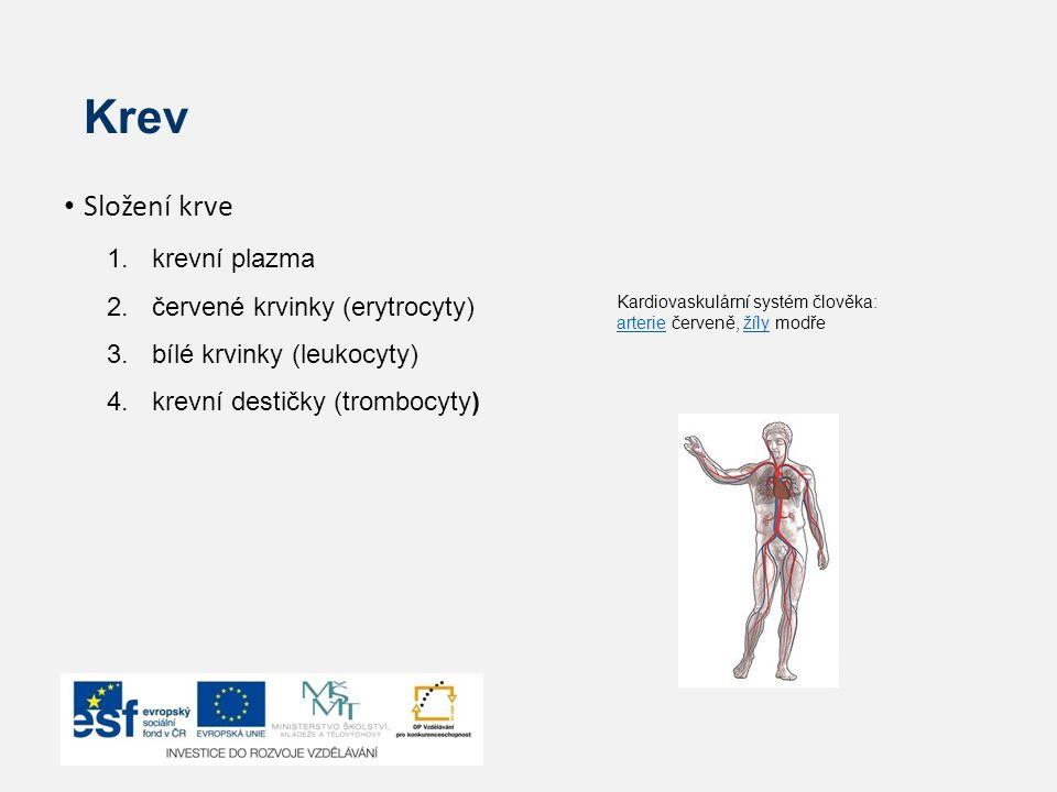 Krev Složení krve krevní plazma červené krvinky (erytrocyty)