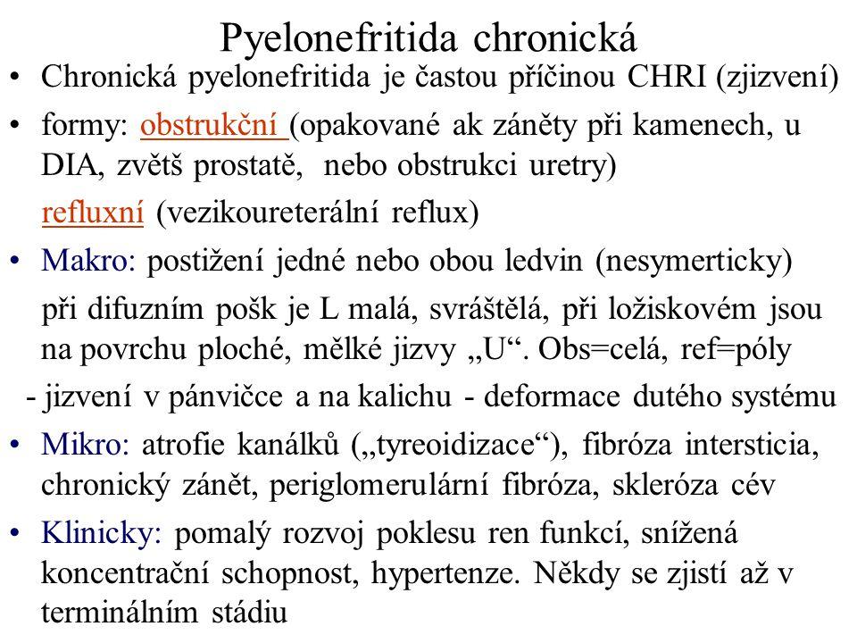 Pyelonefritida chronická