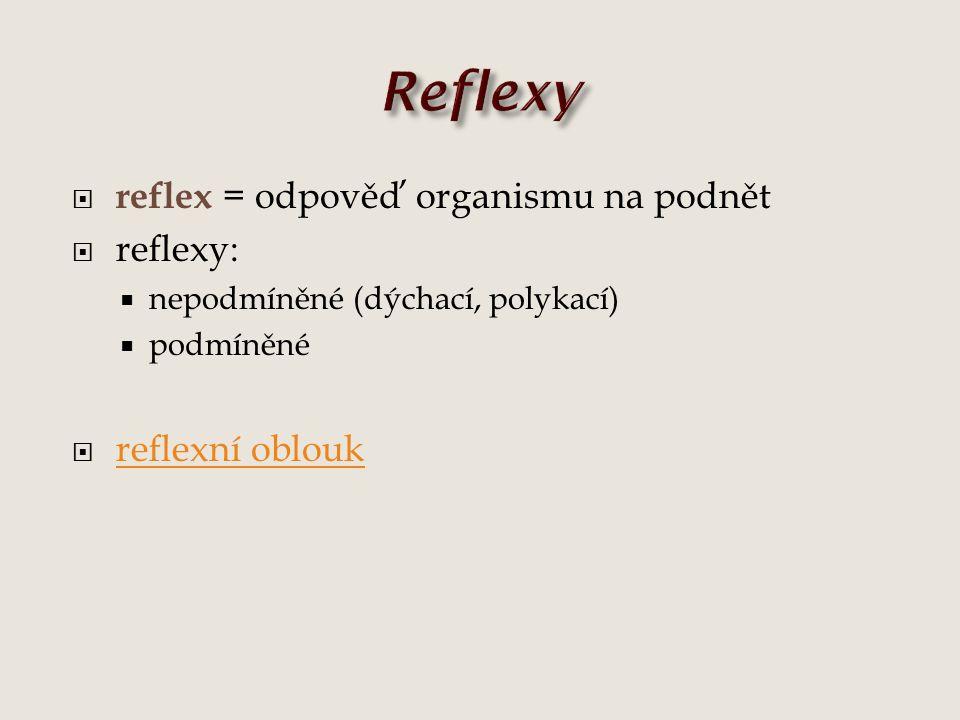 Reflexy reflex = odpověď organismu na podnět reflexy: reflexní oblouk
