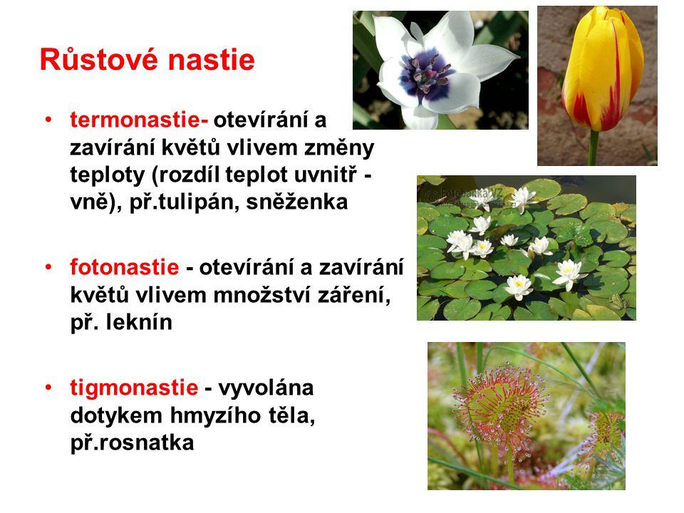 Růstové nastie termonastie- otevírání a zavírání květů vlivem změny teploty (rozdíl teplot uvnitř - vně), př.tulipán, sněženka.