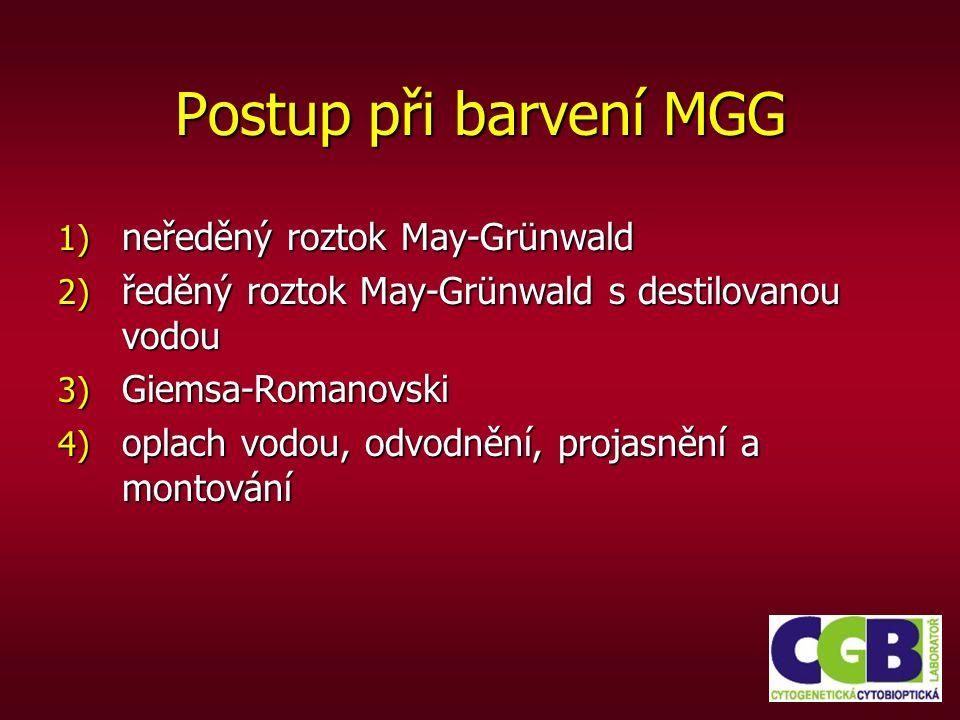 Postup při barvení MGG neředěný roztok May-Grünwald