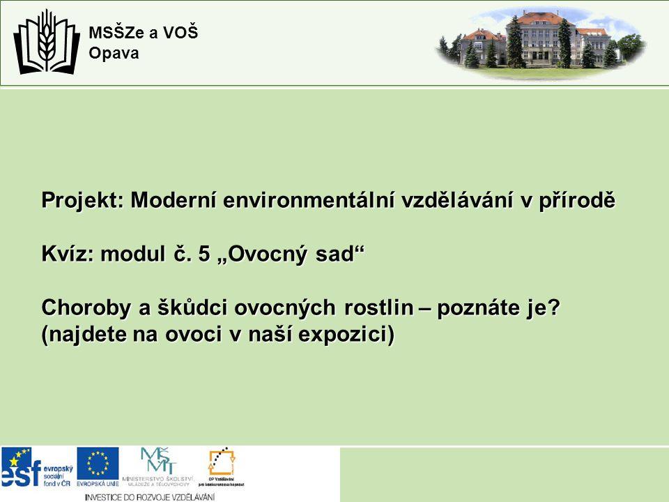 Projekt: Moderní environmentální vzdělávání v přírodě