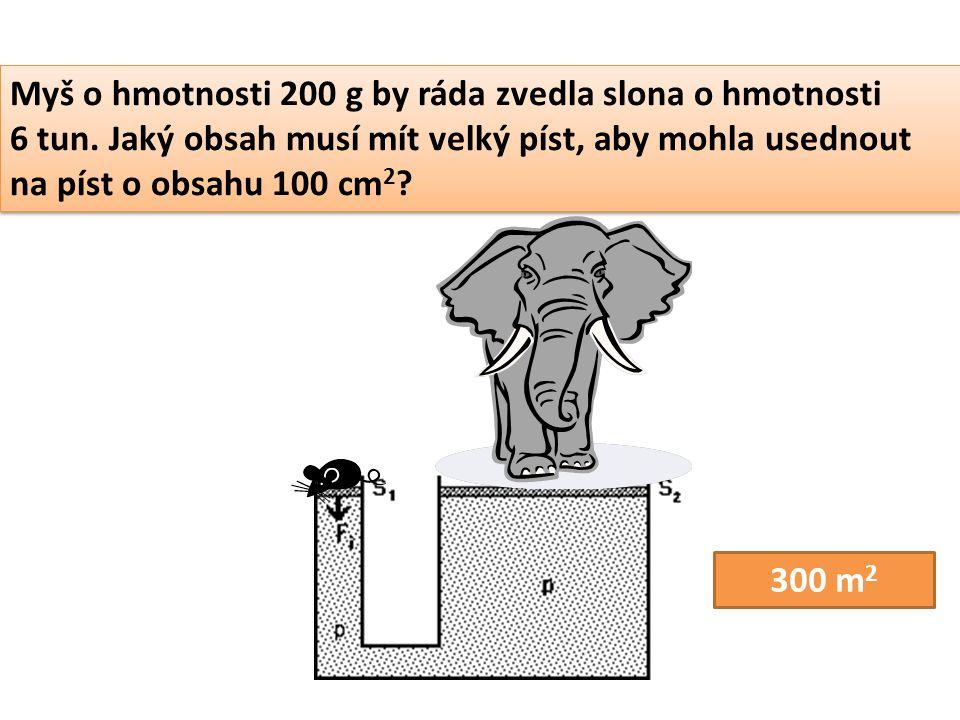Myš o hmotnosti 200 g by ráda zvedla slona o hmotnosti 6 tun