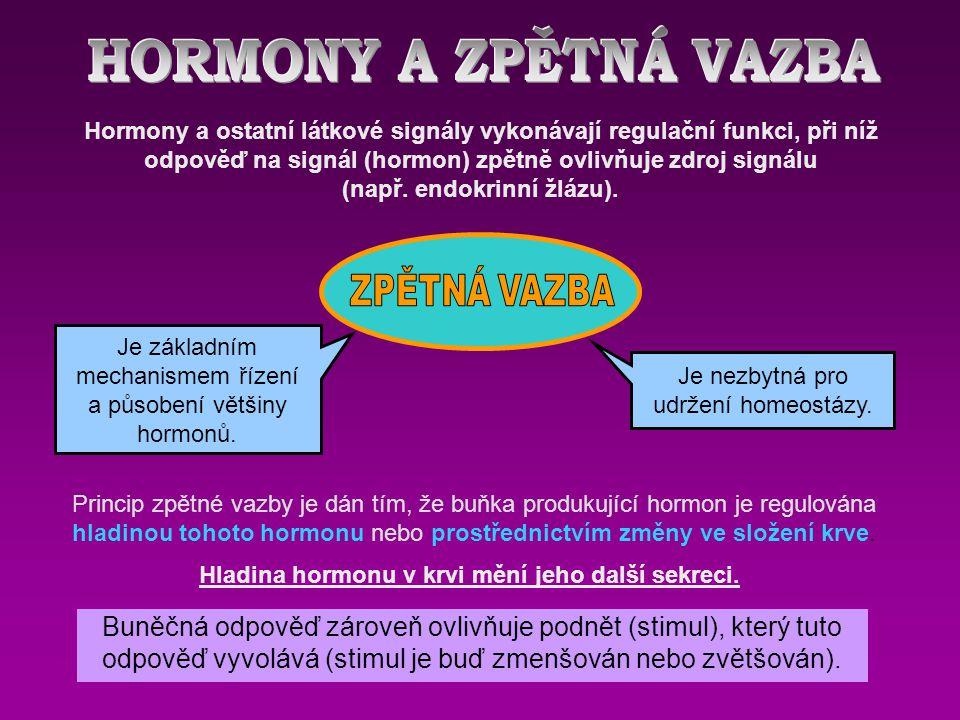 HORMONY A ZPĚTNÁ VAZBA ZPĚTNÁ VAZBA