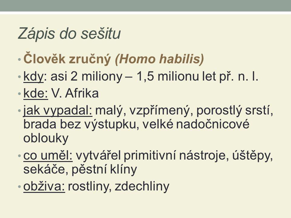Zápis do sešitu Člověk zručný (Homo habilis)