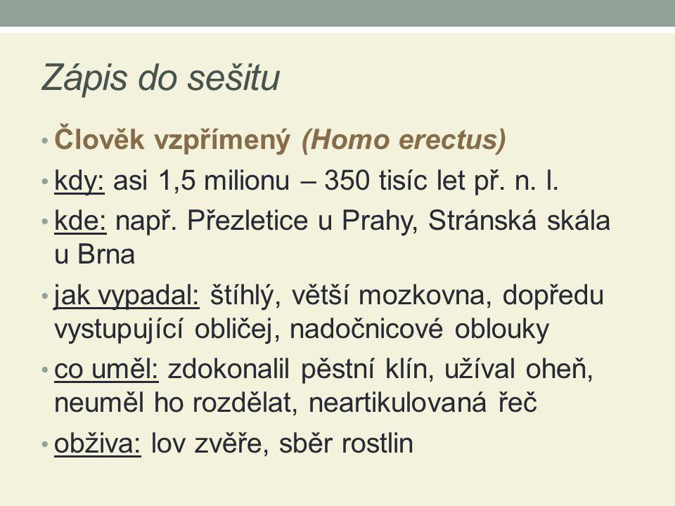 Zápis do sešitu Člověk vzpřímený (Homo erectus)