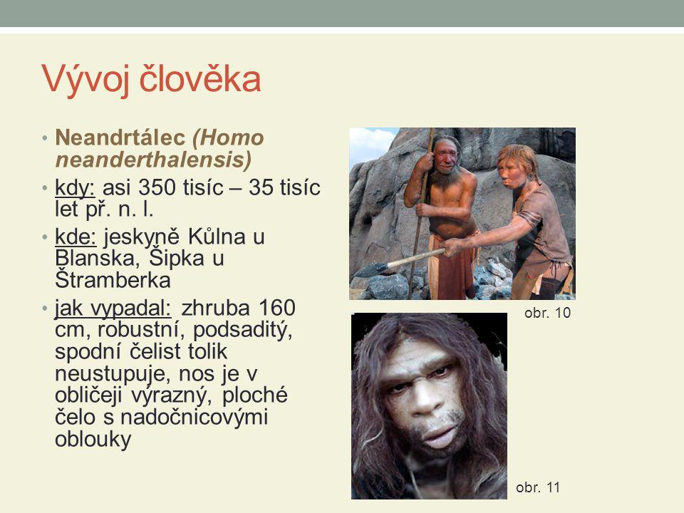 Vývoj člověka Neandrtálec (Homo neanderthalensis)