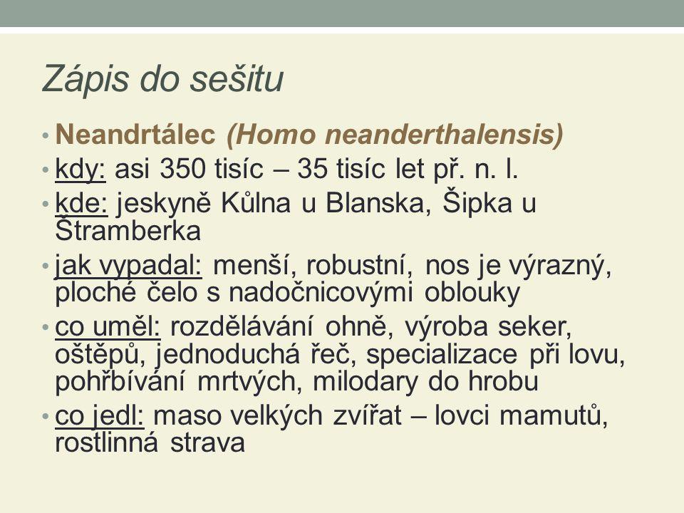 Zápis do sešitu Neandrtálec (Homo neanderthalensis)