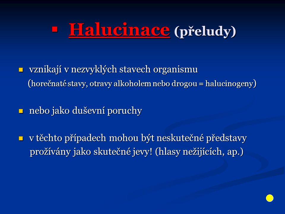 Halucinace (přeludy) vznikají v nezvyklých stavech organismu