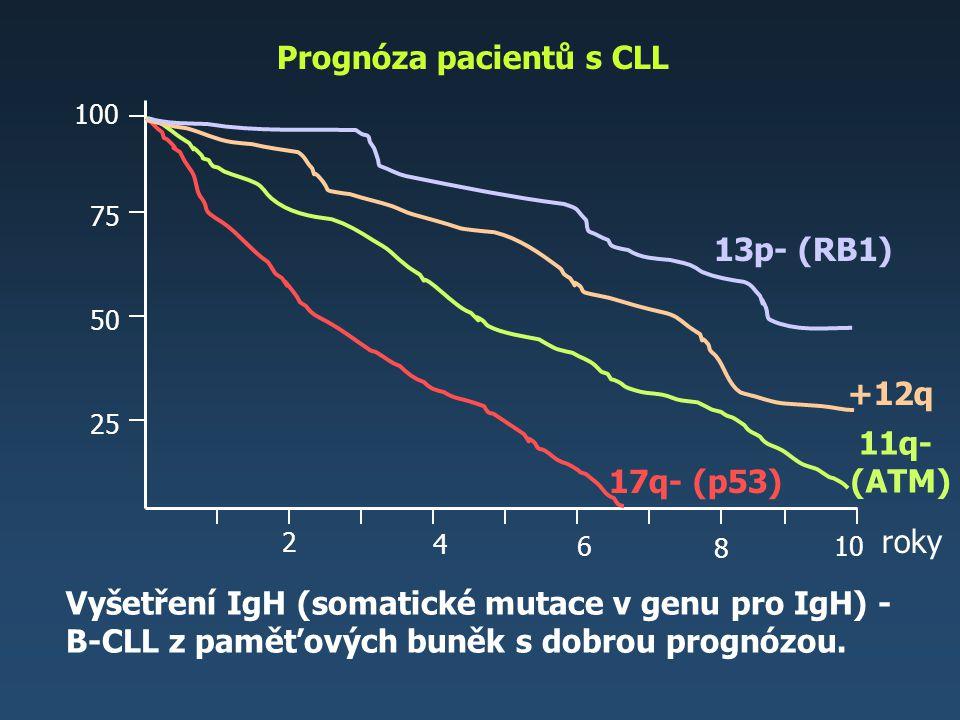 Prognóza pacientů s CLL