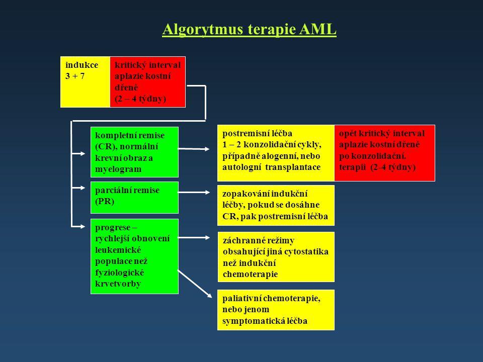 Algorytmus terapie AML