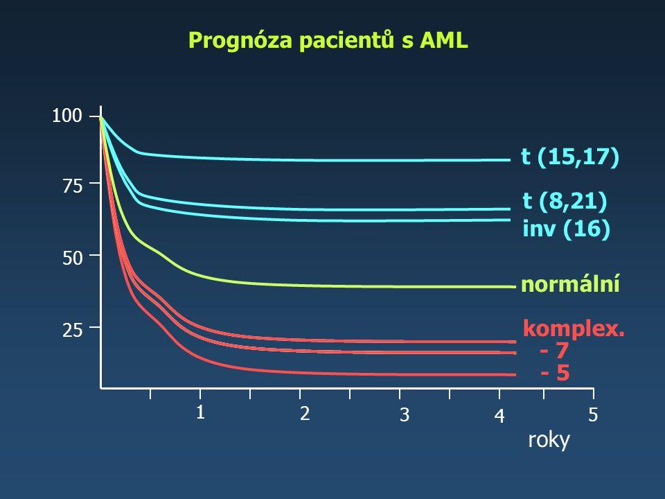 Prognóza pacientů s AML
