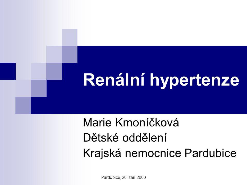 Marie Kmoníčková Dětské oddělení Krajská nemocnice Pardubice