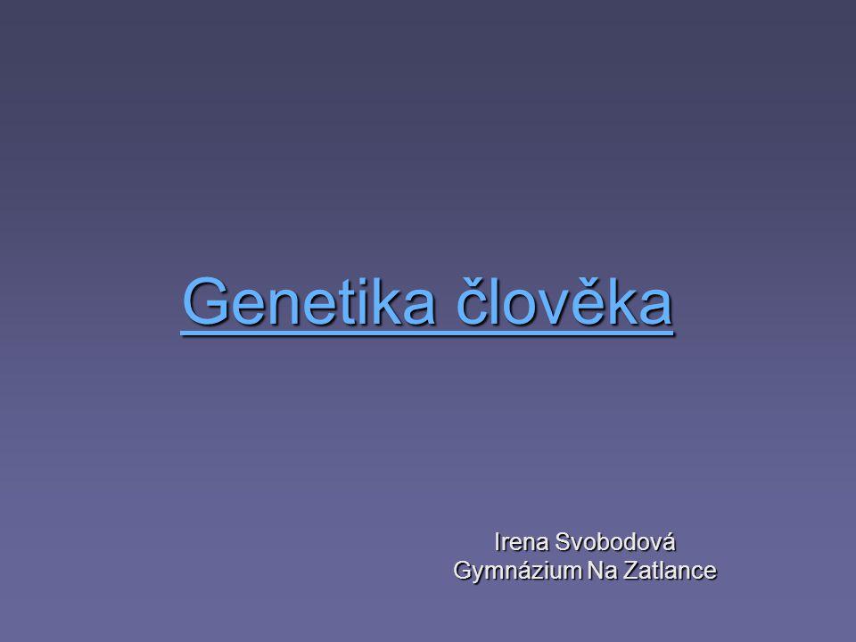 Irena Svobodová Gymnázium Na Zatlance