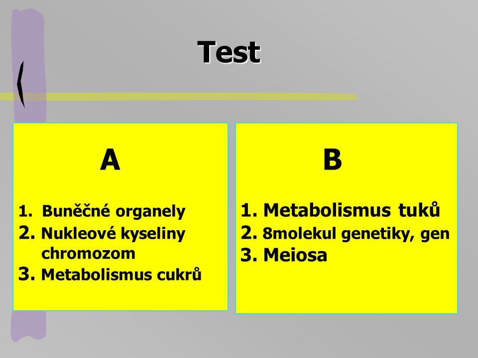 Test A 2. Nukleové kyseliny 3. Metabolismus cukrů B