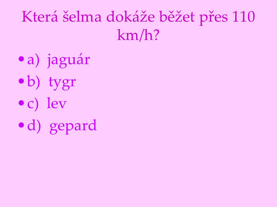 Která šelma dokáže běžet přes 110 km/h
