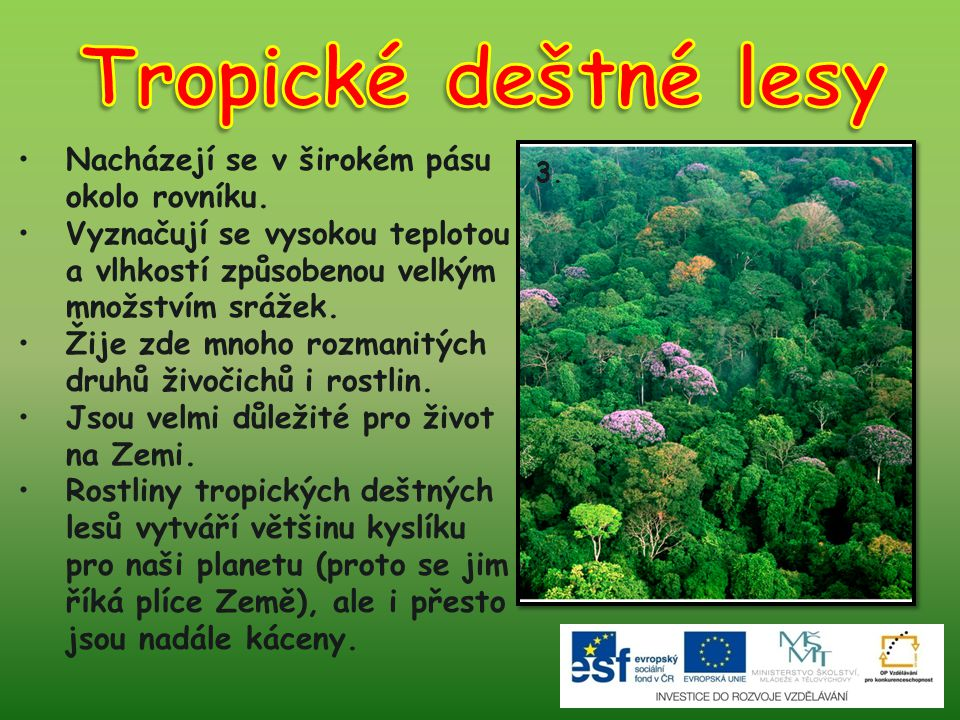 Tropické deštné lesy Nacházejí se v širokém pásu okolo rovníku.