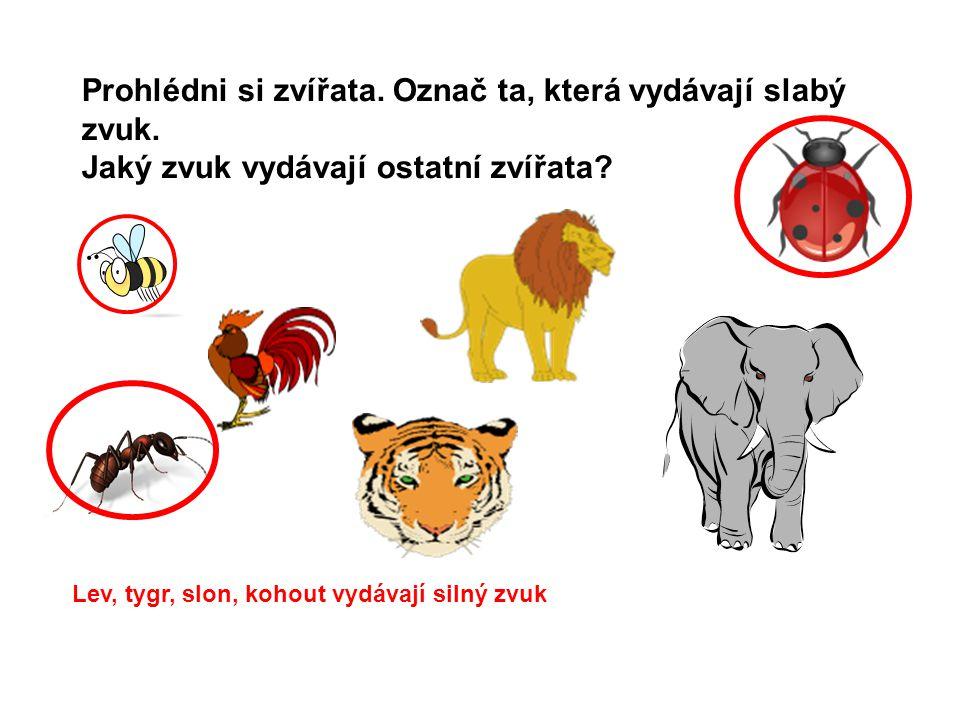 Prohlédni si zvířata. Označ ta, která vydávají slabý zvuk.