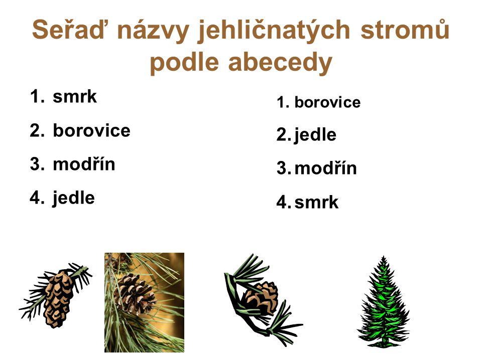 Seřaď názvy jehličnatých stromů podle abecedy