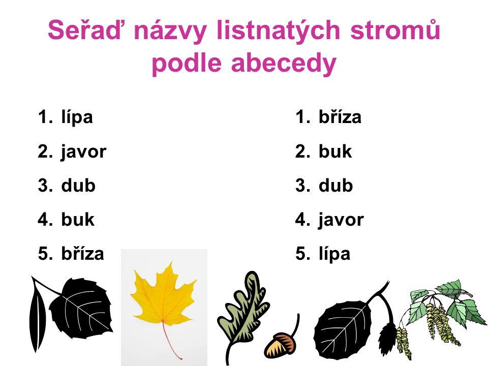 Seřaď názvy listnatých stromů podle abecedy