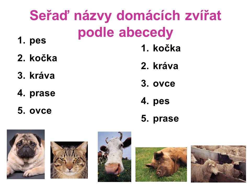 Seřaď názvy domácích zvířat podle abecedy