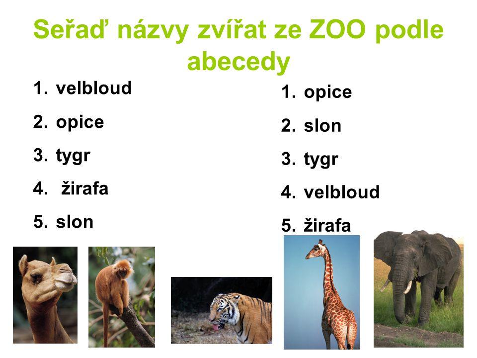 Seřaď názvy zvířat ze ZOO podle abecedy