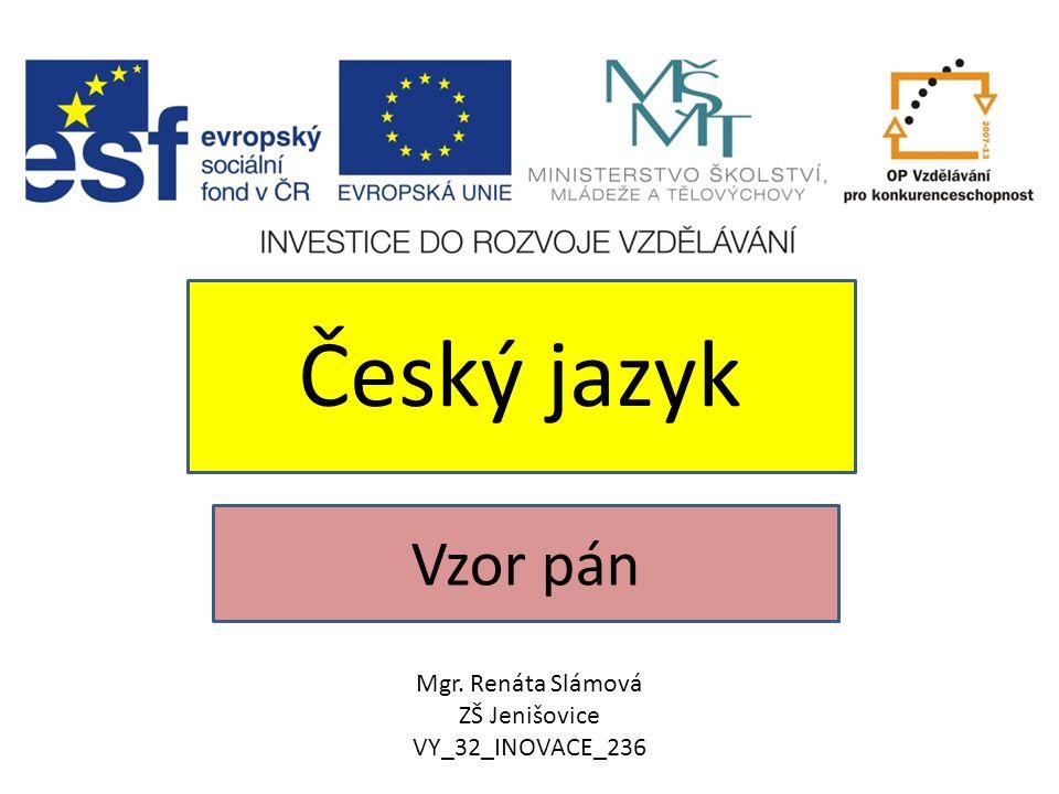 Český jazyk Vzor pán Mgr. Renáta Slámová ZŠ Jenišovice