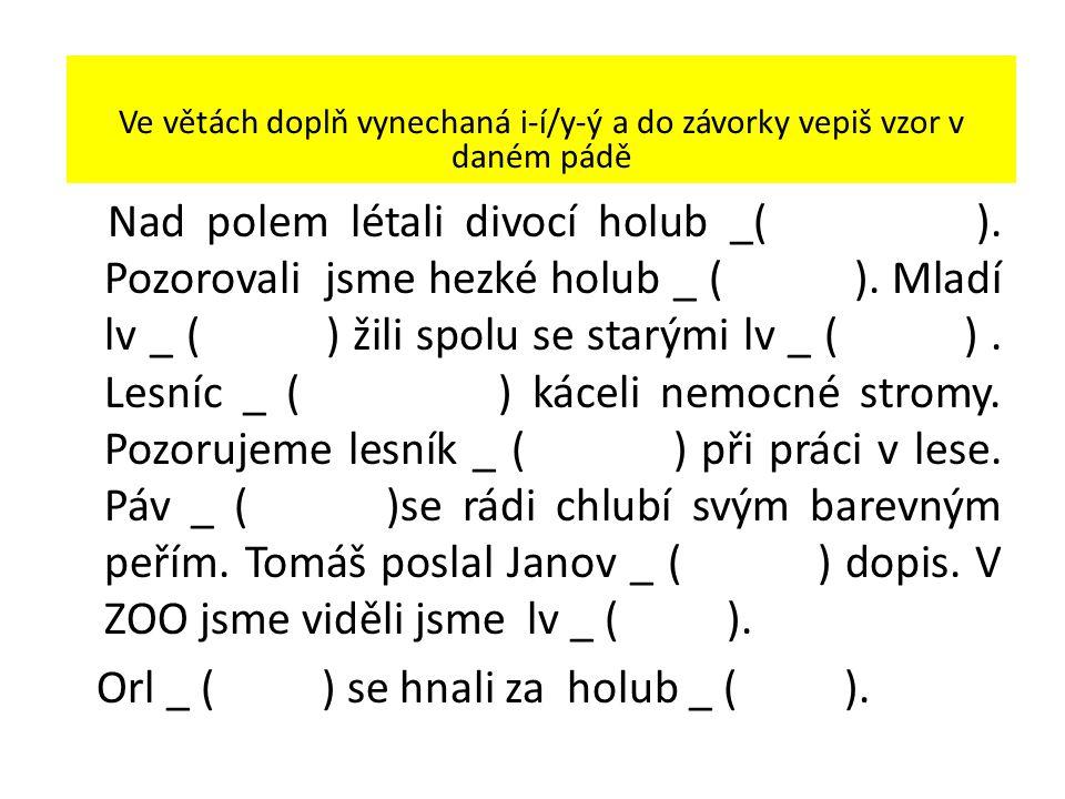 Ve větách doplň vynechaná i-í/y-ý a do závorky vepiš vzor v daném pádě