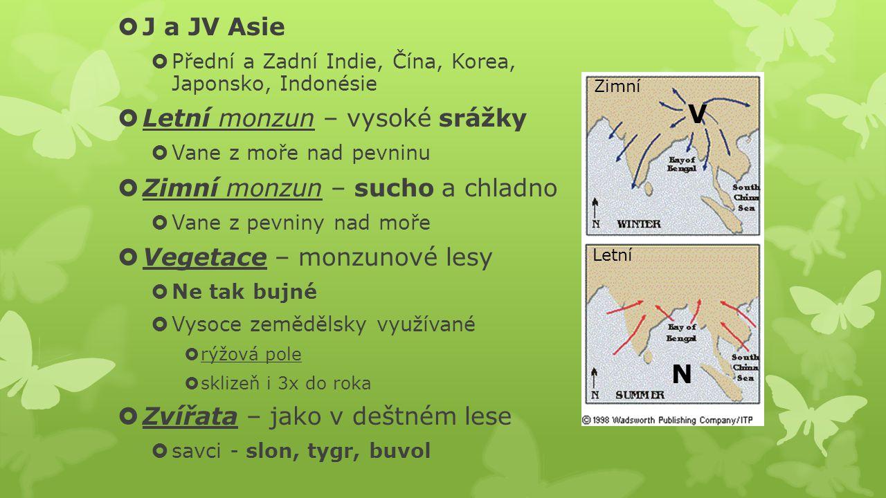 V N J a JV Asie Letní monzun – vysoké srážky