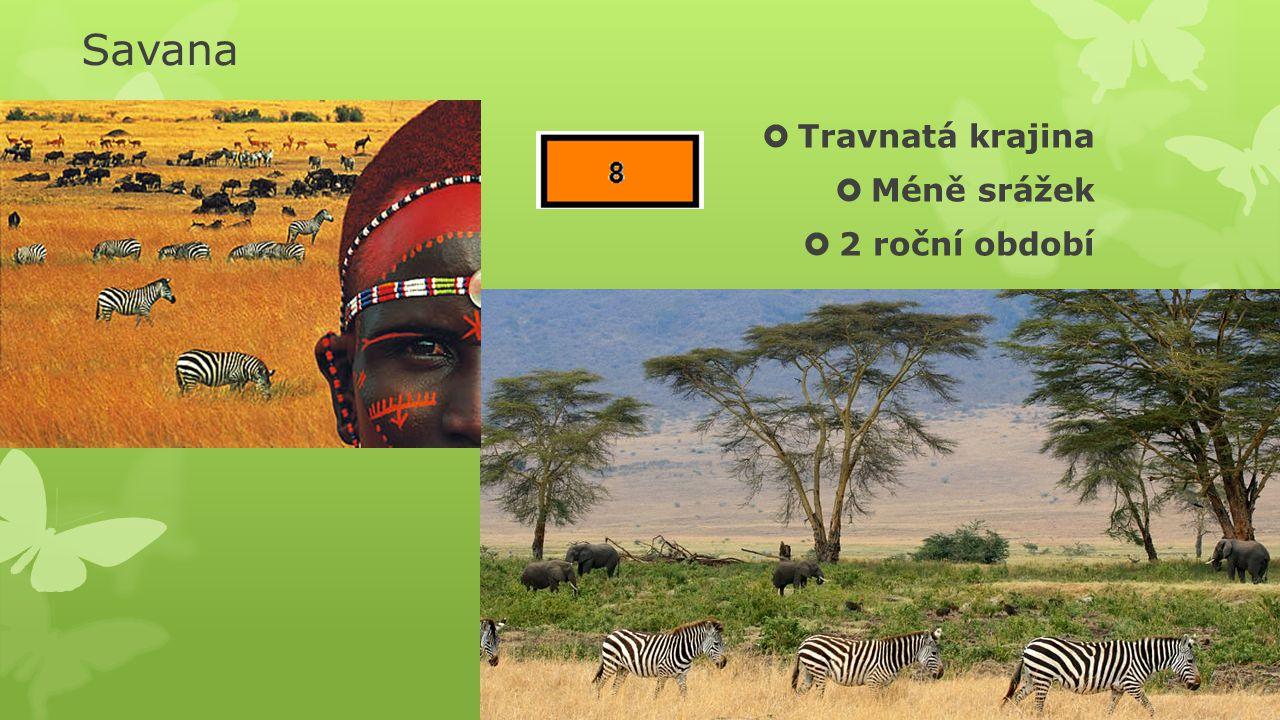 Savana Travnatá krajina Méně srážek 2 roční období