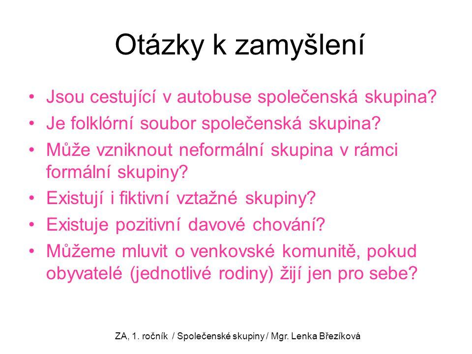 ZA, 1. ročník / Společenské skupiny / Mgr. Lenka Březíková