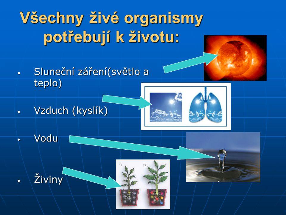 Všechny živé organismy potřebují k životu: