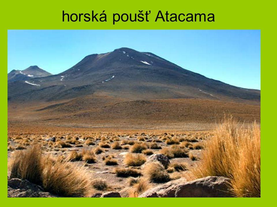 horská poušť Atacama