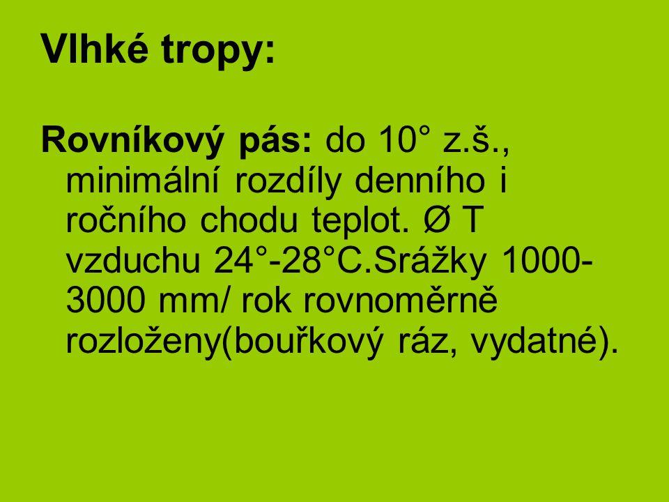 Vlhké tropy: