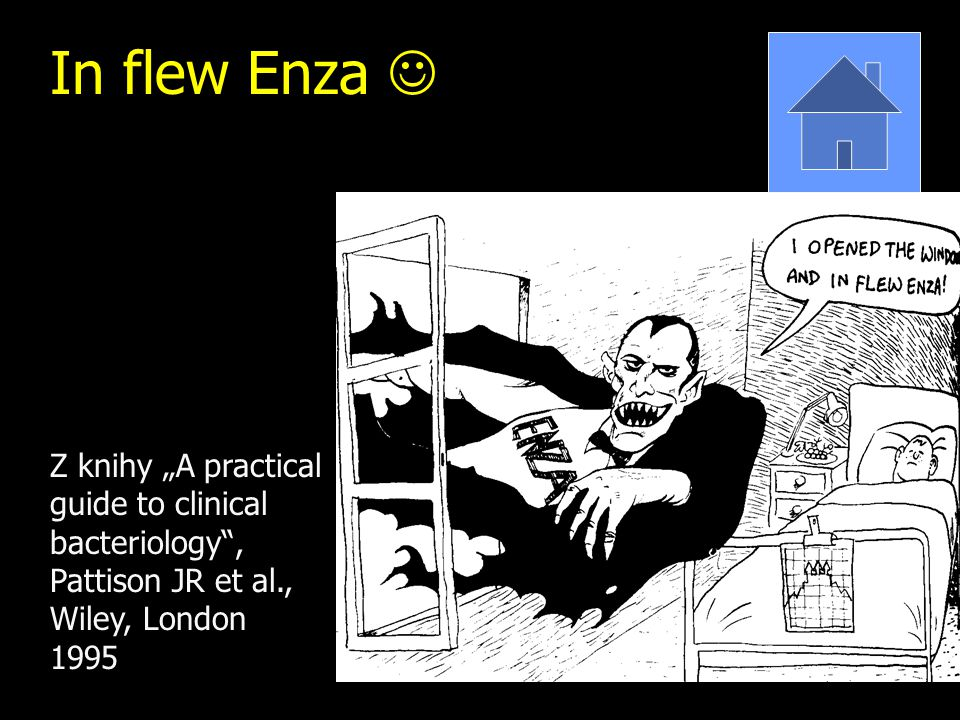 "In flew Enza  Z knihy ""A practical guide to clinical bacteriology , Pattison JR et al., Wiley, London 1995."