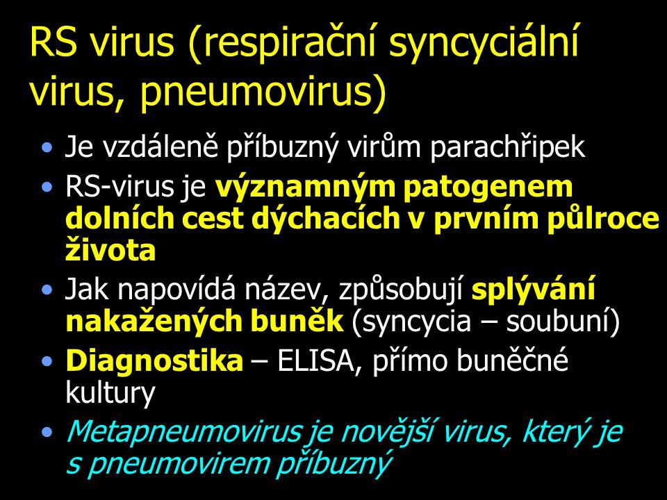 RS virus (respirační syncyciální virus, pneumovirus)