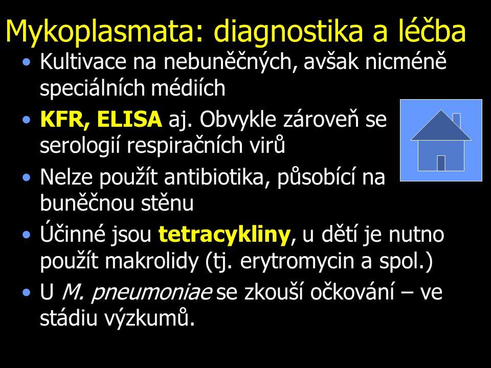 Mykoplasmata: diagnostika a léčba